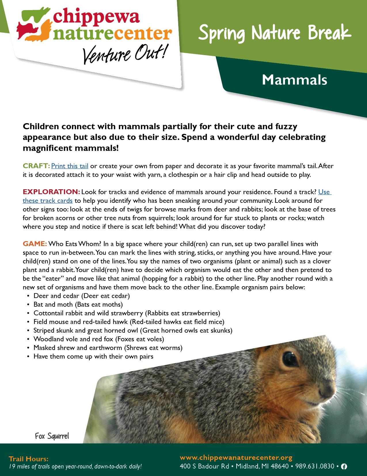 Spring Nature Break - Mammals