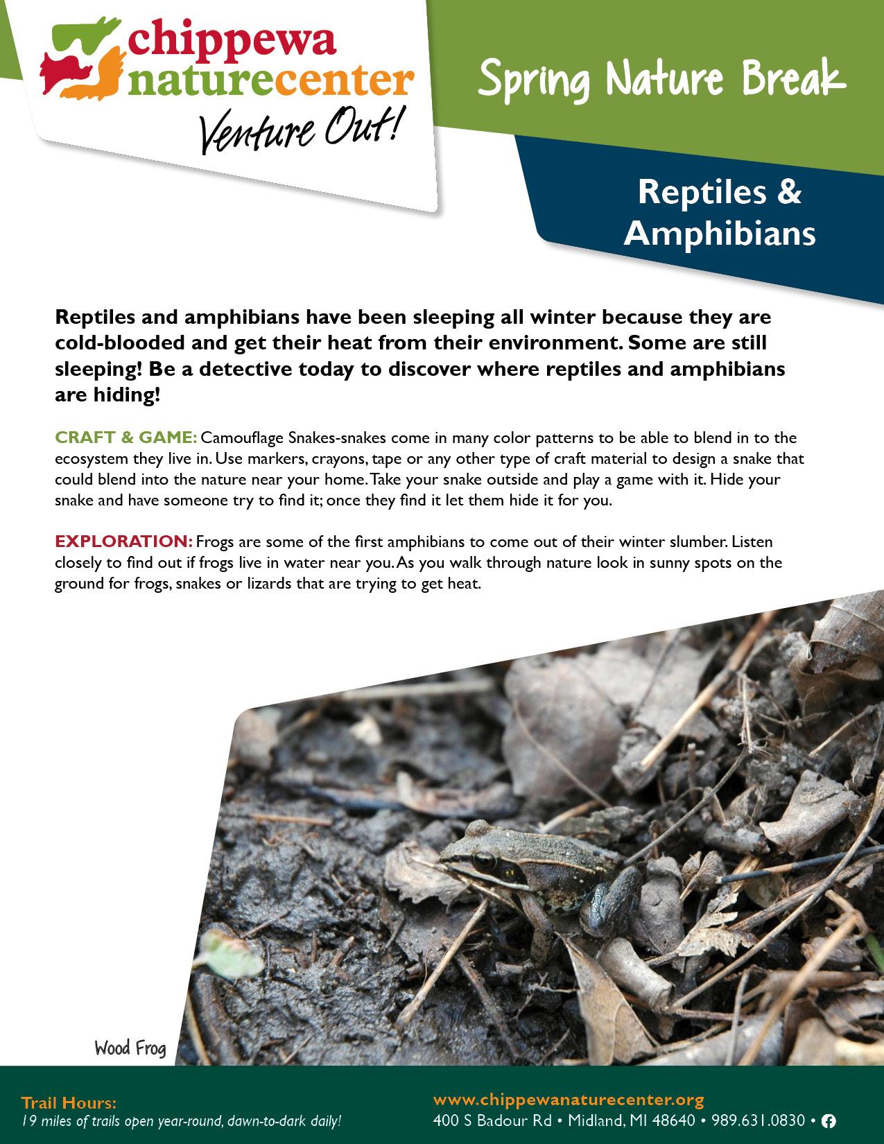 Spring Nature Break - Reptiles & Amphibians